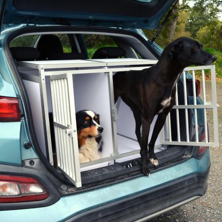2 Chiens de Berger dans leur caisse double pour véhicule électrique Hyundai Kona