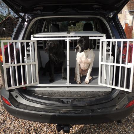 Toyota Rav 4 équipé d'une caisse double pour 2 chiens L : Pointer et Retriever