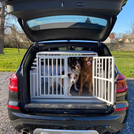 BMW X3 protégée avec une caisse de transport Large Confort + Braveur