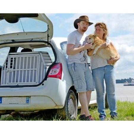 DIBARO LARGE - Caisse de transport pour chien de taille M - Race Welsh Corgi - DIBARO par Braveur®