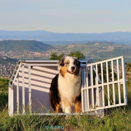 DIBARO LARGE - Caisse de transport pour chien L : Berger Australien - Colley - Dalmatien
