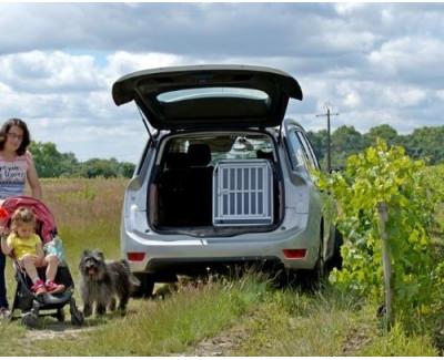 DIB222 - Caisse de transport pour chien M - Type : Berger des Pyrénées - DIBARO par Braveur®