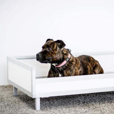 Bac de couchage pour chien - Staff