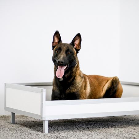Bac de couchage pour chien - Malinois